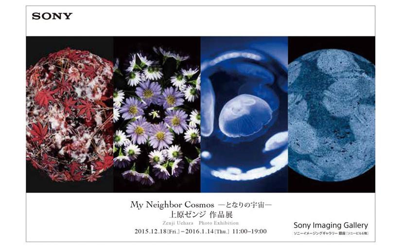 Gallery of Zenji Uehara